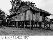 Купить «A wooden house on piles built by settlers deep in the Amazonia region of Colombia  Amazonia is the world´s largest dense tropical forest area  Since the...», фото № 13426197, снято 20 марта 2019 г. (c) age Fotostock / Фотобанк Лори