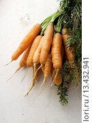 Купить «bunch of carrots with green detail on white», фото № 13432941, снято 17 августа 2008 г. (c) age Fotostock / Фотобанк Лори