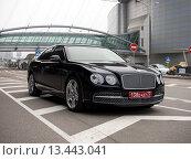 Купить «Представительский автомобиль Bentley Flying Spur с дипломатическими номерами», фото № 13443041, снято 7 ноября 2015 г. (c) Вячеслав Палес / Фотобанк Лори
