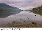 Купить «Misty autumn morning on the shores of Loch Voil, The Trossachs, Stirling, Scotland, United Kingdom, Europe», фото № 13542957, снято 4 августа 2020 г. (c) age Fotostock / Фотобанк Лори
