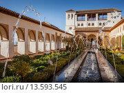 Купить «Patio de la Acequia courtyard of irrigation ditch  El Generalife  La Alhambra  Granada  Andalusia», фото № 13593545, снято 18 июня 2019 г. (c) age Fotostock / Фотобанк Лори
