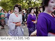 Купить «Parade during Sanja Matsuri, geishas, in Senso-ji Temple Asakusa Tokyo city, Japan, Asia», фото № 13595145, снято 18 июня 2019 г. (c) age Fotostock / Фотобанк Лори