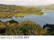 Купить «aerial view over the Chagres River in Sobenia National Park, from the watching tower of the Gamboa Resort, Republic of Panama, Central America», фото № 13658469, снято 24 января 2019 г. (c) age Fotostock / Фотобанк Лори