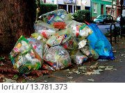 Купить «yellow sacs at street border, Germany, North Rhine-Westphalia, Ruhr Area, Luenen», фото № 13781373, снято 18 апреля 2019 г. (c) age Fotostock / Фотобанк Лори