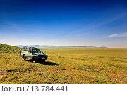Купить «Breakfast break on the plains, Tanzania, Serengeti NP», фото № 13784441, снято 16 февраля 2019 г. (c) age Fotostock / Фотобанк Лори