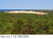 view over pine forest to inland dune Biala Gora, Poland, Slowinski National Park. Стоковое фото, фотограф F. Hecker / age Fotostock / Фотобанк Лори