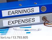 Купить «Earnings and Expenses», фото № 13793805, снято 16 июня 2019 г. (c) PantherMedia / Фотобанк Лори