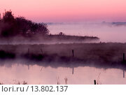 Купить «sunrise in nature reserve Breites Wasser near Worpswede, Germany, Lower Saxony», фото № 13802137, снято 20 января 2020 г. (c) age Fotostock / Фотобанк Лори
