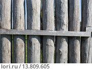 Купить «reconstructed limes palisade in vielbrunn (odenwald,hesse,germany)», фото № 13809605, снято 21 января 2018 г. (c) PantherMedia / Фотобанк Лори