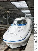 Купить «High Speed Train CRH2 modelled after the Japanese shinkansen in China.», фото № 13897117, снято 13 ноября 2018 г. (c) age Fotostock / Фотобанк Лори
