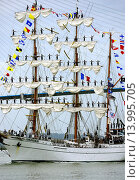 Купить «sailors on Cuauhtémoc - Mexican sailing vessel - three-masted barque, the crew 109 sailors, Armada 2013 - cruise of biggest sailing vessels on Seine river...», фото № 13995705, снято 26 марта 2019 г. (c) age Fotostock / Фотобанк Лори