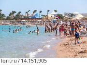 Купить «Взрослые и дети на пляже. Курорт Хургада, Египет», фото № 14151905, снято 3 ноября 2015 г. (c) Кекяляйнен Андрей / Фотобанк Лори