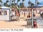 Купить «Египтянин едет верхом на верблюде по пляжу. Хургада, Египет», фото № 14152069, снято 3 ноября 2015 г. (c) Кекяляйнен Андрей / Фотобанк Лори