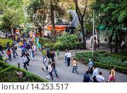 Купить «Génova street, Pink zone, Mexico City, Mexico.», фото № 14253517, снято 15 июля 2020 г. (c) age Fotostock / Фотобанк Лори