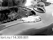 Купить «Mechanics working on an Aston Martin DB3S at the Dundrod TT, Northern Ireland 1953.», фото № 14309801, снято 7 ноября 2013 г. (c) age Fotostock / Фотобанк Лори