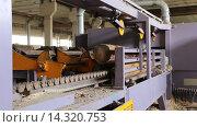 Купить «Пилорама. Подготовка бревен для распила», видеоролик № 14320753, снято 27 августа 2015 г. (c) Евгений Ткачёв / Фотобанк Лори
