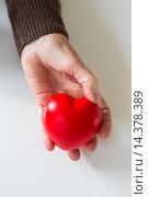 Woman holding heart. Стоковое фото, фотограф VOISIN/PHANIE / age Fotostock / Фотобанк Лори