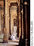 Купить «The mosque Jama Masjid meaning Friday Mosque is the main mosque of Ahmedabad, Gujarat state, India», фото № 14442285, снято 14 декабря 2018 г. (c) age Fotostock / Фотобанк Лори