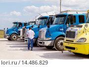 Купить «Florida, Fort Ft Lauderdale, Everglades, Alligator Alley, Miccosukee Service Plaza, Indian Reservation, Native American, truck, lorry, cab, tractor trailer, parked, man, driver,.», фото № 14486829, снято 7 ноября 2013 г. (c) age Fotostock / Фотобанк Лори