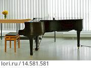 Купить «Черный рояль в пустом зале», фото № 14581581, снято 3 июля 2015 г. (c) Валерия Попова / Фотобанк Лори