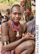 Купить «Hamer warrior at a bull jumping ceremony in the Omo Valley, Ethiopia. Jumping a lineup of cattle is a rite of passage into manhood for young Hamer men...», фото № 14636997, снято 17 января 2019 г. (c) age Fotostock / Фотобанк Лори