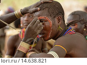 Купить «Young Hamer men painting their faces at a bull jumping ceremony in the Omo Valley, Ethiopia. Jumping a lineup of cattle is a rite of passage into manhood...», фото № 14638821, снято 17 января 2019 г. (c) age Fotostock / Фотобанк Лори