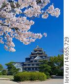 Купить «Okayama Castle», фото № 14655729, снято 19 февраля 2019 г. (c) age Fotostock / Фотобанк Лори