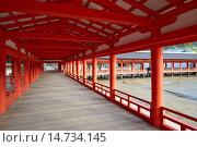 Купить «Itsukushima Shrine is a Shinto shrine on the island of Itsukushima popularly known as Miyajima, best known for its ´floating´ torii gate. It is in the...», фото № 14734145, снято 23 марта 2019 г. (c) age Fotostock / Фотобанк Лори