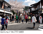 Купить «Matsubara dori street filled with tourists during cherry blossom season in Higashiyama, Kyoto, Japan 2014.», фото № 14777889, снято 16 июля 2019 г. (c) age Fotostock / Фотобанк Лори