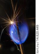 Купить «Голубой бенгальский огонь», фото № 14820449, снято 23 июня 2014 г. (c) Argument / Фотобанк Лори