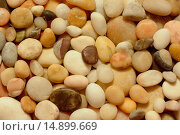 Цветные камни на берегу. Стоковое фото, фотограф Нефедьев Леонид / Фотобанк Лори