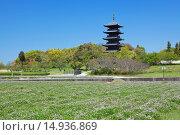 Купить «Lotus field, Bitchu Kokubu temple, Five-Storied Pagoda, Soja, Okayama, Sanyo, Japan», фото № 14936869, снято 26 марта 2019 г. (c) age Fotostock / Фотобанк Лори