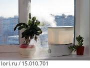 Купить «Увлажнитель воздуха на подоконнике», фото № 15010701, снято 16 февраля 2020 г. (c) Юрий Стройкин / Фотобанк Лори