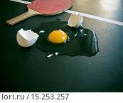 Купить «Table-Tennis», фото № 15253257, снято 24 апреля 2019 г. (c) age Fotostock / Фотобанк Лори