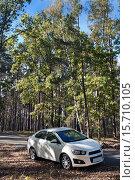 Автомобиль в лесу. Стоковое фото, фотограф Левончук Юрий / Фотобанк Лори
