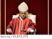 Купить «Pope Francis during the Holy Friday, celebration of the Lord's Passion. Vatican City 03/04/2015.», фото № 15873373, снято 3 апреля 2015 г. (c) age Fotostock / Фотобанк Лори
