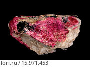 Купить «Eudialyte, Mont Saint-Hilaire Canada, a minor ore of zirconium», фото № 15971453, снято 29 декабря 2014 г. (c) age Fotostock / Фотобанк Лори