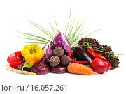 Купить «Свежие овощи на белом фоне», фото № 16057261, снято 2 августа 2014 г. (c) Pavel Ivanov / Фотобанк Лори