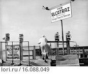 Купить «San Francisco, California: c. 1953.A curious woman takes a look through a telescope across San Francisco Bay at the Federal Prison on Alcatraz Island.», фото № 16088049, снято 10 декабря 2019 г. (c) age Fotostock / Фотобанк Лори