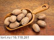 Купить «pecan nuts in rustic scoop», фото № 16118261, снято 11 июля 2020 г. (c) age Fotostock / Фотобанк Лори