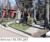 Купить «Могила актёра Юрия Никулина на Новодевичье кладбище в Москве», эксклюзивное фото № 16191261, снято 9 апреля 2009 г. (c) lana1501 / Фотобанк Лори