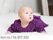 Маленькая девочка в фиолетовом платье лежит на животе. Стоковое фото, фотограф Алексей Чубов / Фотобанк Лори