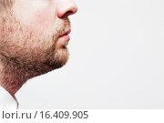 Небритый мужчина в профиль. Стоковое фото, фотограф Виктор Колдунов / Фотобанк Лори