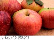 Äpfel. Стоковое фото, фотограф Barbara Stolzer / easy Fotostock / Фотобанк Лори