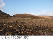 Каменистая пустыня на плато Путорана (2011 год). Стоковое фото, фотограф Сергей Дрозд / Фотобанк Лори