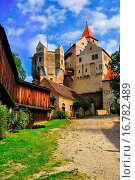 Купить «Gothic Castle Pernstejn, South Moravia, Czech Republic, Central Europe», фото № 16782489, снято 19 декабря 2018 г. (c) easy Fotostock / Фотобанк Лори