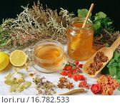 Infusion and honey. Стоковое фото, фотограф Emilio Ereza / easy Fotostock / Фотобанк Лори
