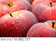 Äpfel nass. Стоковое фото, фотограф Heiko Eschrich / easy Fotostock / Фотобанк Лори
