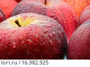 Äpfel nass...... Стоковое фото, фотограф Heiko Eschrich / easy Fotostock / Фотобанк Лори
