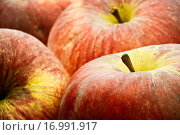 Äpfel....... Стоковое фото, фотограф Heiko Eschrich / easy Fotostock / Фотобанк Лори